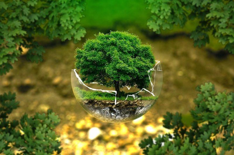 oflyTech. La economía ambiental ya representa casi el 2% del PIB en España